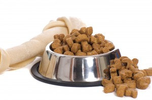 Alimentazione cane
