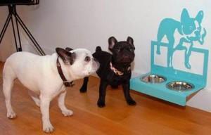 très loué choisir officiel nouveaux articles Ciotole per cani: in ceramica, acciaio e plastica e con supporto