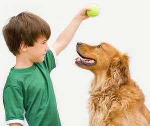Educare il cucciolo