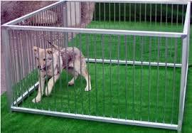 Recinzioni Per Cani Da Giardino.Recinti Per Cani Da Esterno Usati Recinto Per Cani Usato Con Box