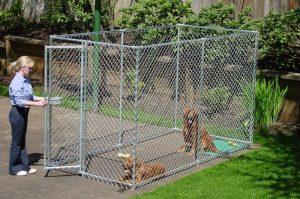 Recinti per cani recinzioni da interno e da esterno for Recinzione per cani da esterno
