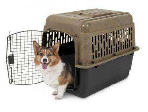 Trasportino O Kennel Per Cani Taglia Grande Media Anche Per Auto